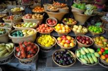 Hortofrutículas